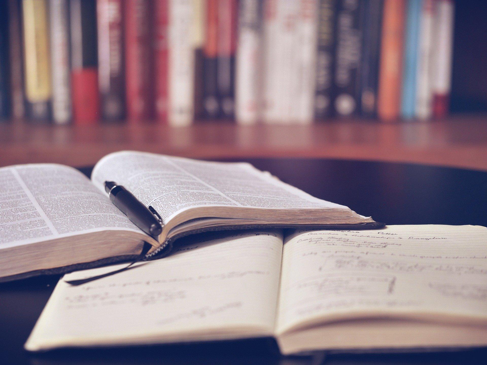 Ausbildung Buchhalter/in: Voraussetzungen, Dauer & Möglichkeiten